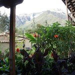 The room with a view at El Albergue