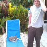 Hotel kitty on a lounge chair in the garden by the pool.