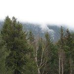 A misty morning Cranberry ridge