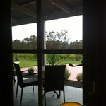 view of vineyard from restaurant botanica