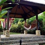 Nayara hammocks