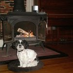 Rudy by the fire place