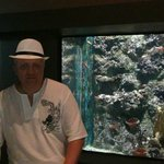 аквариум недалеко от отеля