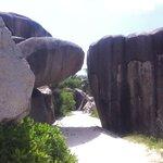 Granit : Anse Source d'Argent