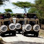3 of our cars in Tarangire National Park