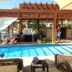 Royal Pool, swim up bar area