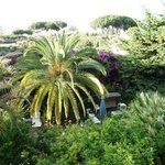Bed and Breakfast Il Giardino di Villa Anna Foto