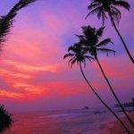sunset at Plantation