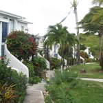 Garden path at Trade Winds