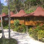 bungalows enfrente de las habitaciones standard