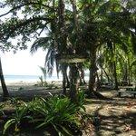 Beach at Manzanillo