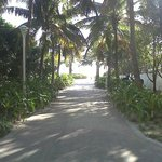 El acceso a la playa a 30 metros del hotel