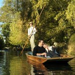 Punting on the Avon