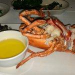 2 lb Lobster