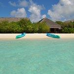 Kayak time (free rental)
