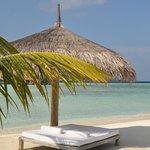 Beach bed !