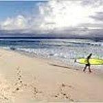 Surfer's Beach! Snorkler's Beach & Diving!
