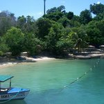 Stingray City Jamaica Foto
