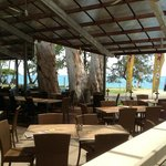 Palm Cove Cafe and Tapas Bar