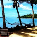Hammocks under coconut trees