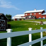 Inn guests can visit the owner's Hilltop Orchards farm winery in nearby Richmond