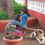 beautiful dog in hotel uday named 'SADU'