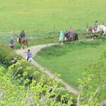 Horseriding at Underhill Riding Stables