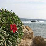 Уголок пляжа