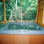 Woodcreek Cabin hot tub for two