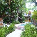 Le jardin intérieur de l'hôtel