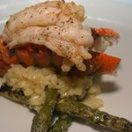 Lobster tail over risotto