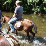 Horse back tour