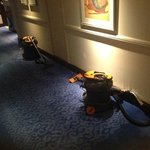 hoovers left in the hallway most of the day and night - come on housekeepers t