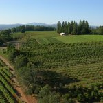 El Dorado Wine Country by Unique Aeriography