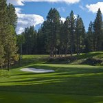 #8 Green at Glaze Meadow