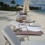 The lounges should be cleaned when people leave.  The lounge chairs are also t