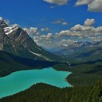 View of Peyto Lake from the viewing platform