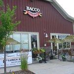 Bacco Day