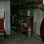 Orbs in basement