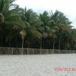 Beach Scene 3