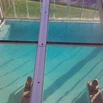 Vista desde arriba exterior pileta