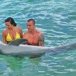 activitée catamaran et daulphin