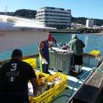 Fish boat parked next to Te Papa