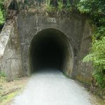 Tunnel on trail