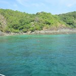Coral Island!