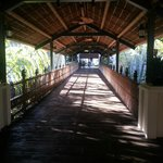Walkway to Reception