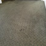 stained, torn carpeting