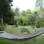The lovely hammock and the grounds