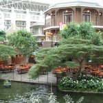 Gaylord Grand Old Opry inside gardens.