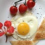 Eggs composition